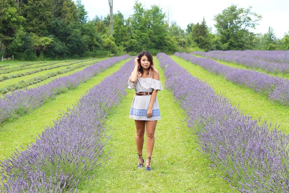 Terre Bleu Lavender Farm Outfit 1
