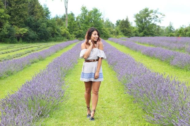 Terre Bleu Lavender Farm Outfit 2