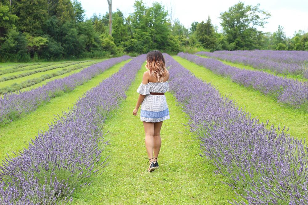 Terre Bleu Lavender Farm Outfit 3