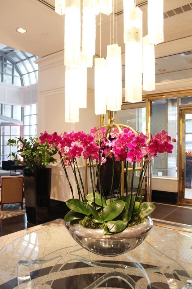 Loews Hotel Vogue Lobby 6
