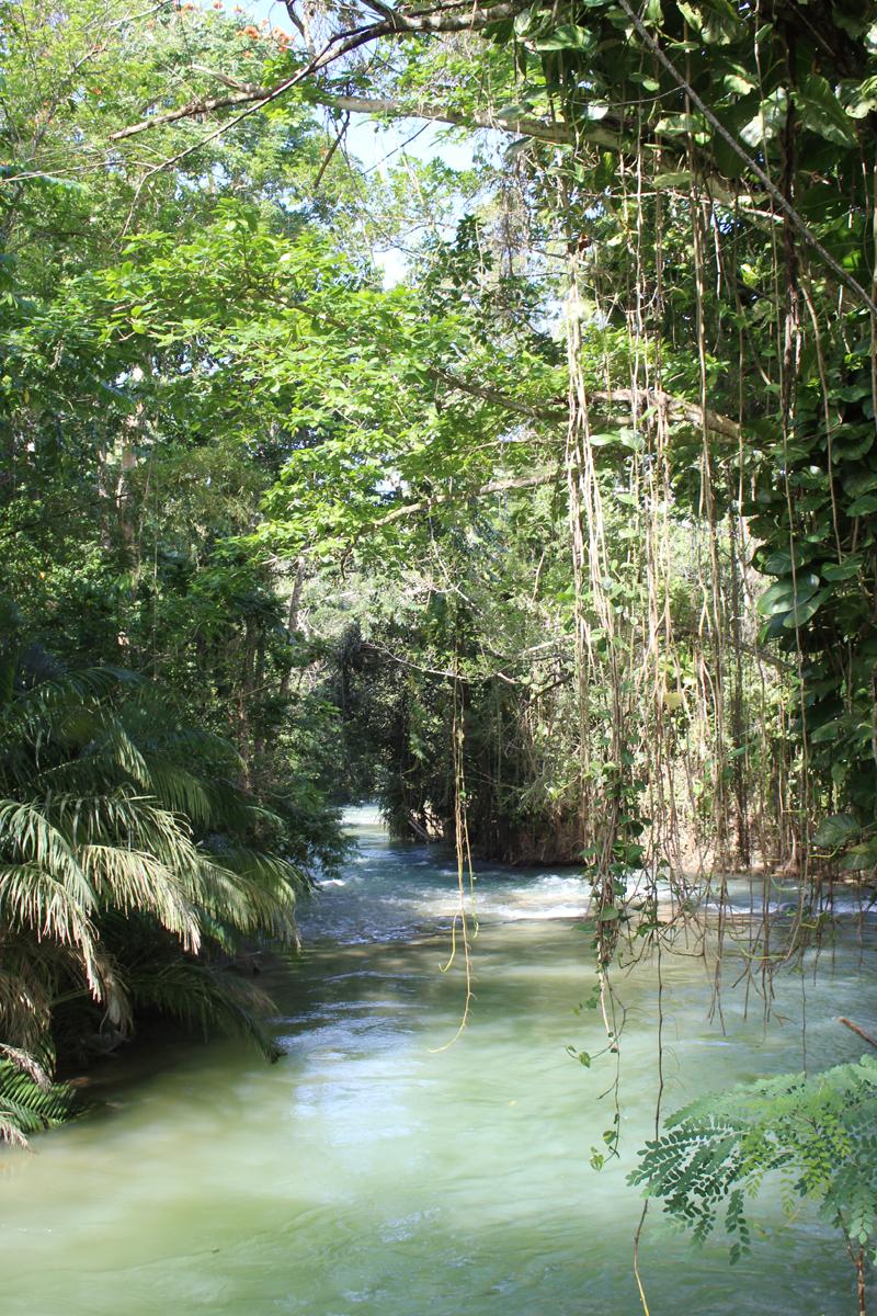 Martha-Brae-River-2